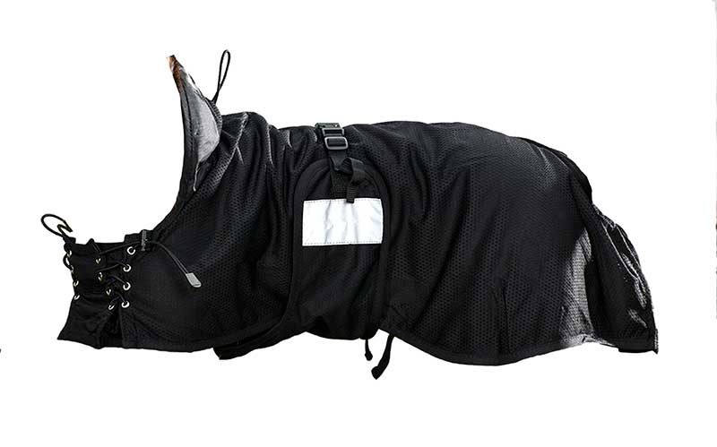 187 Therapeutic Dog Coat Mesh Largeback On Track Horse